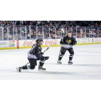JT Henke of the Utah Grizzlies celebrates a goal