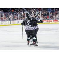 JT Henke and the Utah Grizzlies celebrate a goal
