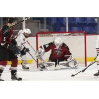 Vancouver Giants goaltender Braedy Euerby vs. the Kamloops Blazers