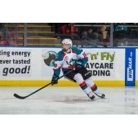 Forward Steel Quiring with the Kelowna Rockets